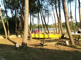 http://www.locationsallemorbihan-lafermedesvisons.fr